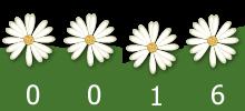 compteur